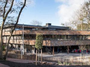 basisschool met groen schoolplein