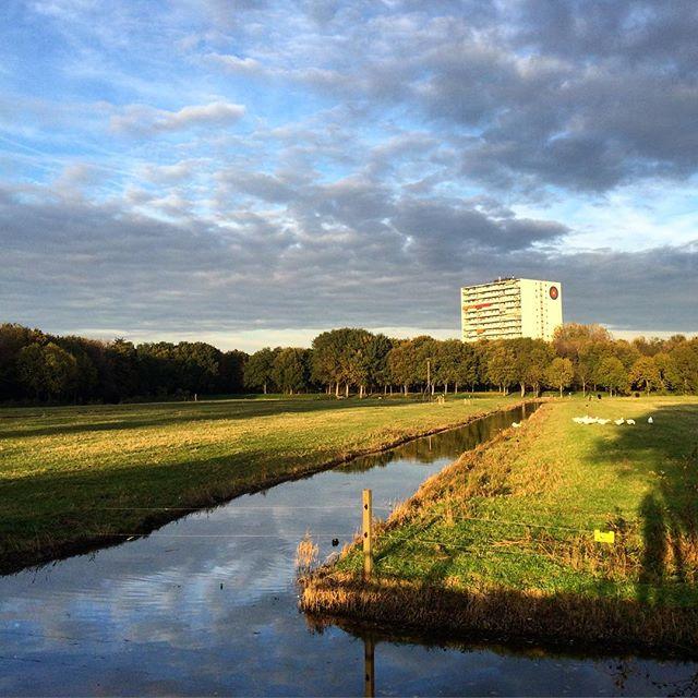 De Uithof in Den Haag.